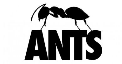 Ibiza-concept ANTS op Extrema Outdoor