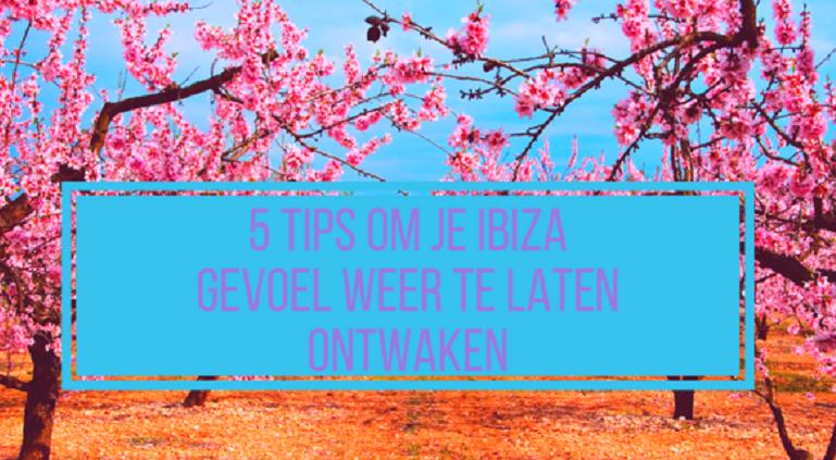 5 tips om je Ibiza gevoel weer te laten ontwaken