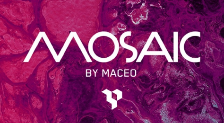 Mosaic by Maceo opening party 2017
